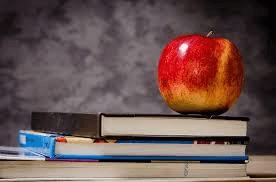 Newark Public Education In Brief